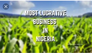 10 Most Lucrative Business In Nigeria