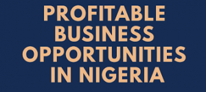 Business Ideas In Nigeria